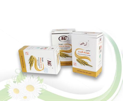 wheat-germ1