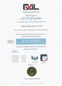 iso100004
